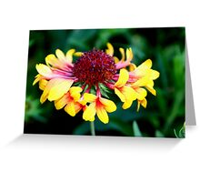 Flower With Flowers Greeting Card