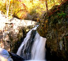 Kilgore Falls_Autumn Glory by Hope Ledebur