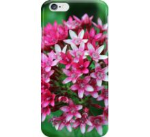 Nature's Flower Bouquet iPhone Case/Skin