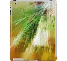 Earth Silk iPad Case/Skin