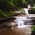 Ithaca's Buttermilk falls X by PJS15204
