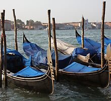 Gondolas of Venice by CherylBee