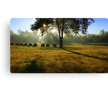 Early Morning Fog.. Canvas Print