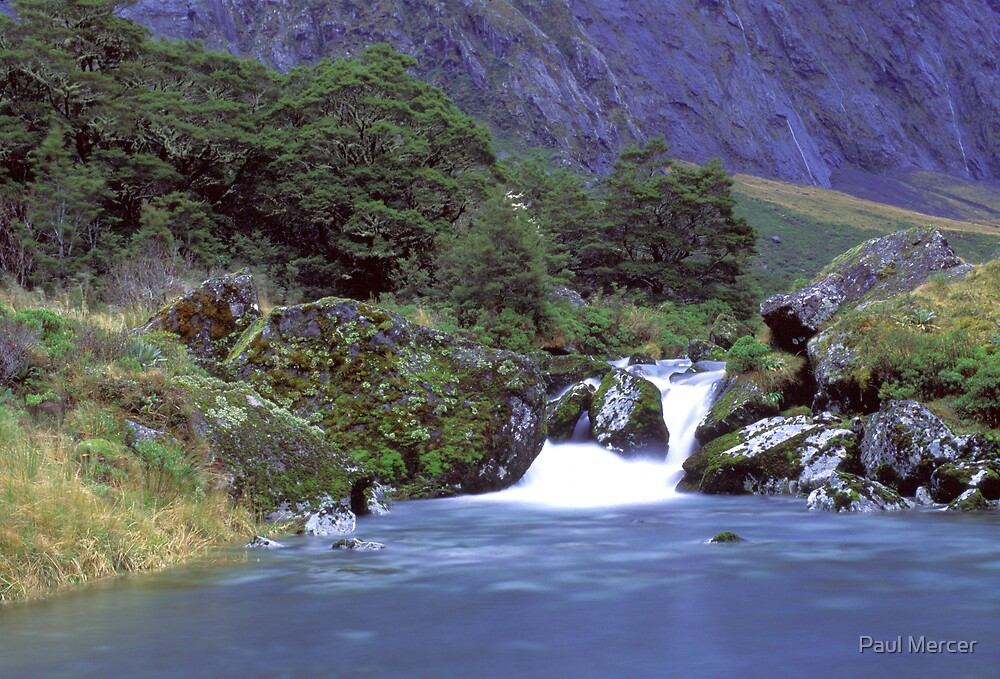 Gertrude Valley, Fiordland National Park by Paul Mercer