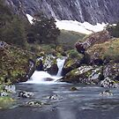 Gertrude Valley, Fiordland National Park by Paul Mercer