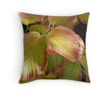 autumn leaves in the garden Throw Pillow