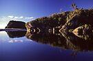 Ship Creek, South Westland by Paul Mercer