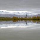 Wairepo Arm, Lake Ruataniwha by Paul Mercer