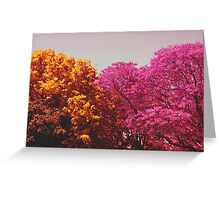 two colours Greeting Card