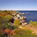 Amazing coastal colours by georgieboy98