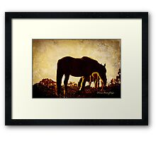 Somewhere ... Framed Print