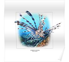 COMMON LIONFISH 1 Poster