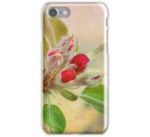 Crabapple Blossom iPhone Case/Skin