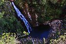 Coomera Falls by Jason Asher
