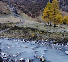 Autumn in the mountains by krasser
