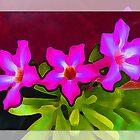 Three flowers by Heike Schenk Arena