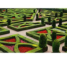 Villandry Chateau_2, Loire Photographic Print