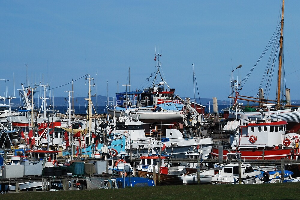 Fishing boat harbour by Heather Thorsen