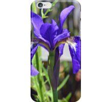Beautiful Blue Iris........ iPhone Case/Skin