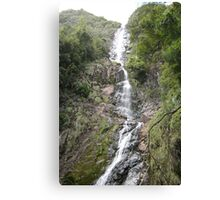 Wending Watery Way-down at Montezuma Falls Canvas Print