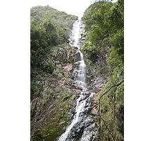 Wending Watery Way-down at Montezuma Falls Photographic Print