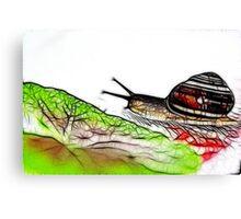 Snail & Letuce Canvas Print