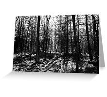 If you go down to the woods today... Greeting Card