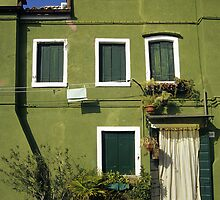 Green House, Burano, Venice, Italy  by Petr Svarc