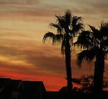 Sunset in AZ. by Bonnie Pelton