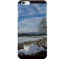 White Winter , Blue Winter iPhone Case/Skin