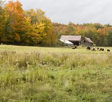 Old farm landscape 2 by Sean McConnery