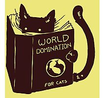 World Domination For Cats Photographic Print