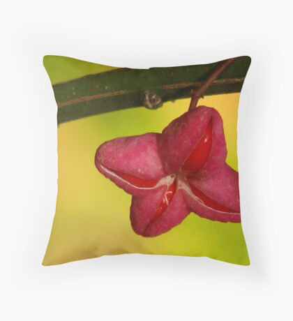 A Pod? Throw Pillow