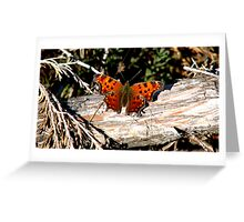 Green Comma  Greeting Card