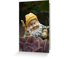 Sunnyboy the Garden Gnome Greeting Card