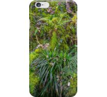 Old Disused Quarry iPhone Case/Skin