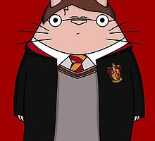 TotoPotter by Ednathum