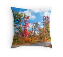 Tennessee Backroads #1 Throw Pillow