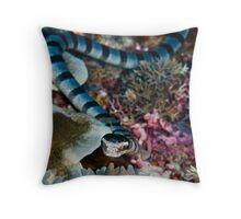Banded sea snake Throw Pillow