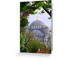 Springtime in Istanbul Greeting Card