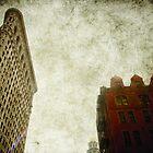 flatiron red brick by Sonia de Macedo-Stewart