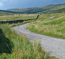 The Road in Glen Cassley by WatscapePhoto