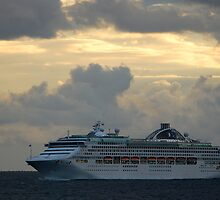Sun Princess at Sea by Bev Woodman