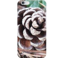 The Tale Of The Lone Pine Cone iPhone Case/Skin