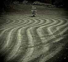 _ grass patterns _ by Louise LeGresley