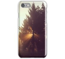 Herbstlicht iPhone Case/Skin