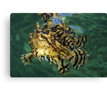 Walking In Water Canvas Print
