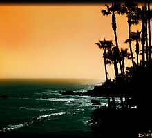 Laguna Beach, Ca by Scott  Remmers
