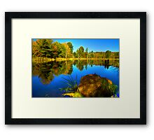 Looking Across The Pond Framed Print