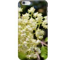 Red Elderberry Blossoms II iPhone Case/Skin